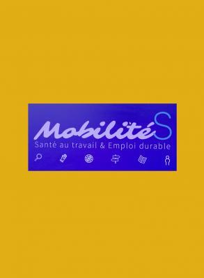 capture _mobilite_bloc
