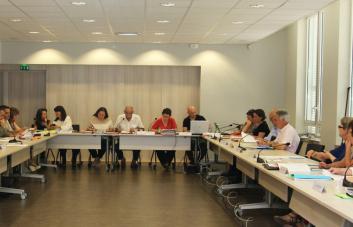 Réunion plénière CAP A au CDG31